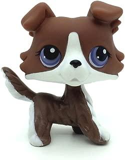 KK toy store Littlest Pet Shop Rare Brown Collie Dog with Purple Eyes Puzzle #NO LPS