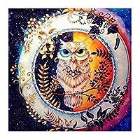 フクロウ花葉サラウンドのフルラインストーン刺繍ホームアートDIY装飾絵画ダイヤモンド リビングルームモダンな家の装飾