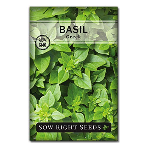 Sow Right Seeds - Greek Basil Seed for Planting -...