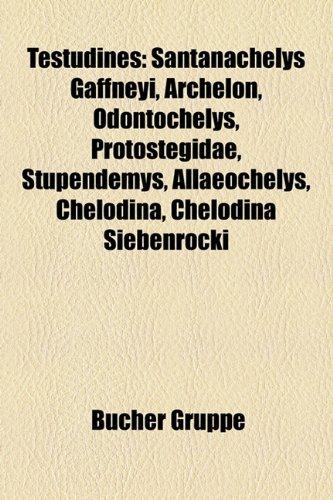 Testudines: Santanachelys Gaffneyi, Archelon, Odontochelys, Protostegidae, Stupendemys, Allaeochelys, Chelodina, Chelodina Siebenr