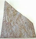 Carpathian Elm Burl wood veneer 4' x 7' x 7' raw no backing 1/42' thickness AAA