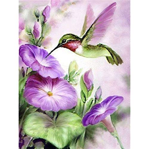DIY Diamond Painting Kit,Diamond Painting Full Round Drill Embroidery Paintings Pictures for Home Wall Decor Hummingbird, Trumpet Flower 11.8x15.7 in by UM UPMALL