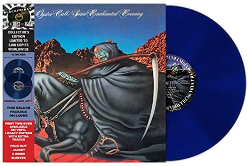 Some Enchanted Evening [Vinyl LP]