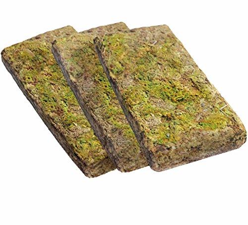 Dragon - Forest Moos - Tropisches Terrarium Substrat Forest Moss 3x100g