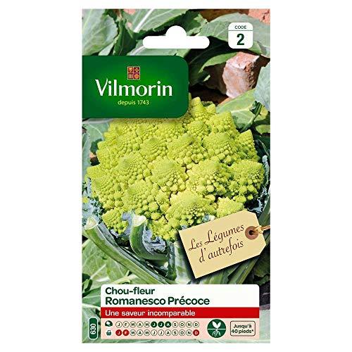 Vilmorin : Chou Brocoli Vert Romanesco - En Sachet