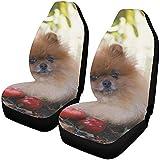 Fundas para asientos de automóvil Asientos delanteros Manzanas para perros de Pomerania Manzanas de jardín Protector de asiento para vehículo de cosecha Fundas para alfombrillas de coche automóviles