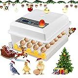 Kacsoo Incubadora de Huevos Digital Incubadora Automática de 16 Huevos con Control de Temperatura Incubadora Automática con Volteador para Incubar Huevos de Gallina de Codorniz de Ganso de Pavo