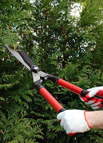 TABOR TOOLS B212A Telescopic Hedge Shears with Wavy Blade and Extendable Steel Handles. Extendable Manual Hedge Clippers for Trimming Borders, Boxwood, and Tall Bushes.