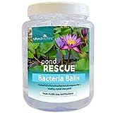 All Pond Solutions - Filtro de Rescate para Estanque (1000 ml)