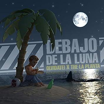 Debajo de la Luna