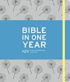 Bible One Years