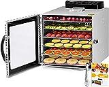 Kwasyo Deshidratador de Alimentos Acero Inoxidable, Recetas, con Temporizador, Pantalla LCD, Temperatura Regulable Deshidratador de Frutas, Vegetales, Carne y Hierbas (6 Bandejas)