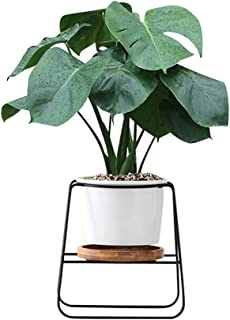Fieren Indoor Planter pots,Succulent pots,Small Flower Pot,Indoor Plant Stand for 4.3