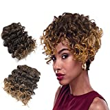 Weimeier hair Brazilian Curly Deep Weave...