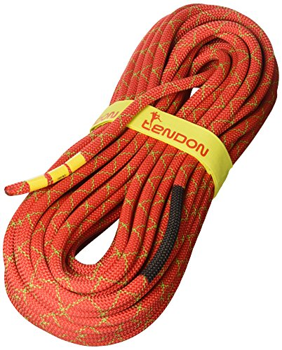 Tendon -   Kletterseil Smart