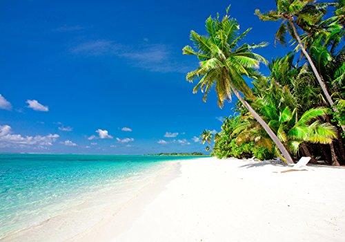 wandmotiv24 Fototapete Strand und Meer Karibik XXL 400 x 280 cm - 8 Teile Fototapeten, Wandbild, Motivtapeten, Vlies-Tapeten Palmen, Sand, Himmel M0030