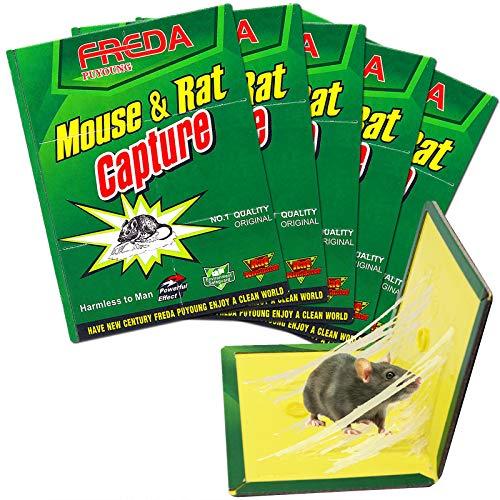 Piège à Souris et à Rats Hydrogarden