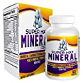 SuperMAX Multi Minerals (All-in-1) Supplement Complex Iron Free with 72 Trace Minerals / Multiminerals / Mineral Supplements / Natural Multimineral Formula - 60 Tablets