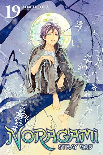 Noragami: Stray God Vol. 19 (English Edition)