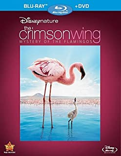 Disneynature: Crimson Wing - The Mystery of the Flamingo