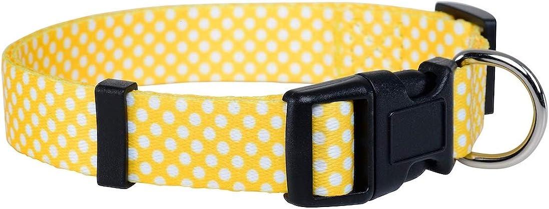 Native Pup Polka Dot Dog Collar Black Sm Pink Yellow Max 43% Tampa Mall OFF Blue