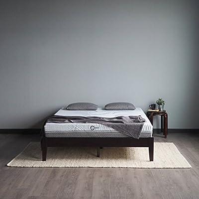Comfort Option Alpha Conventional Bed Mattress