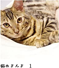 猫のまんま 1: ネコとのコメディネーション