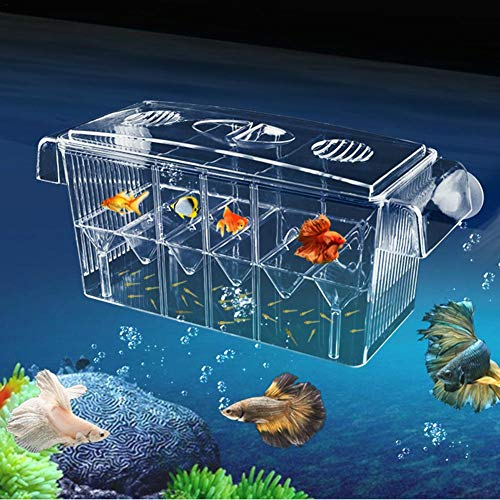 Aquarium Ablaichkasten Klein GroßMultifonctionnel hautement transparent Boîte de nidification de poissons auto-nageant Double couche Berceau pour la pisciculture Aquarium Incubateur Isolation Box