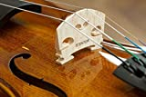 Immagine 1 stentor violino student i 3