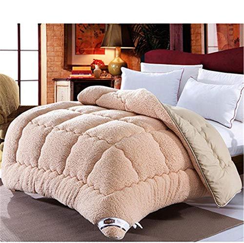 Hxsm Winter Lamb Velvet Fabric Quilt, Super Soft and Warm Hollowfiber Filled Quilt,Hygroscopic Breathable Cashmere Quilt Anti-Allergy Duvet(Single,Double)-220x240cm_5kg