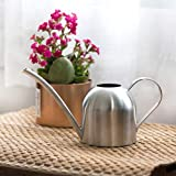 Stainless Steel Watering Can, Used for Gardening or Indoor Watering, Durable and Beautiful