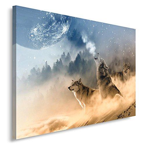 Feeby. Cuadro en lienzo - 1 Parte - 50x70 cm, Imagen impresión Pintura decoración Cuadros de una pieza, LOBO, NATURALEZA, MARRÓN, AZUL
