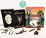 Edible Chocolate Bug Bundle - Pack of 3 - Scorpion, Ants, Worms & Crickets - With Licensed Sticker
