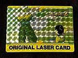 ドラゴンボールZ アマダPPカード オリジナル レーザーカード(ピッコロ 孫悟飯)