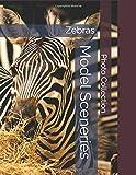 Zebras - Model Sceneries - Photo Collection