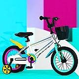 YUANP Bicicleta para Niños con Ruedas De Entrenamiento Bebé para Niños Pequeños Bicicleta De Equilibrio De Montaña De 12 14 16 Pulgadas Marco De Acero con Alto Contenido De Carbono,B-14in