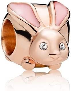 Best bunny charm pandora Reviews
