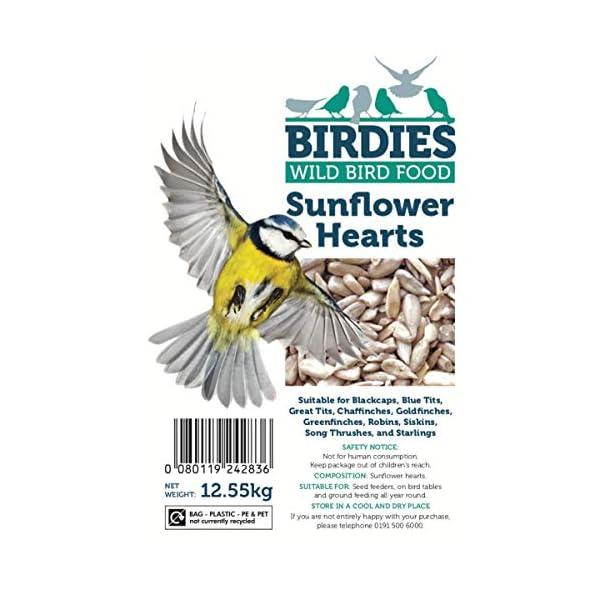 Birdies Sunflower Hearts- Bird Seed for Wild Birds