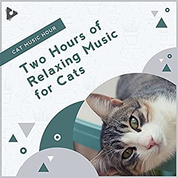 Two Hours of Relaxing Music for Cats