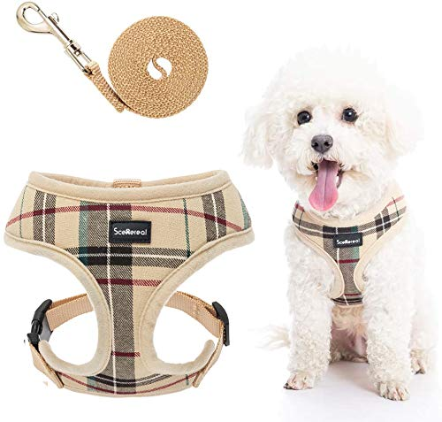 Dog Fashion Harness