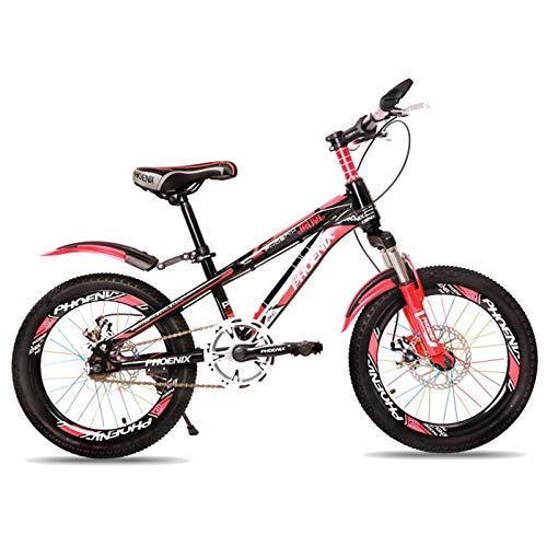 Axdwfd Infantiles Bicicletas Los Niños Al Aire Libre De Bicicletas, Durante 7-14 Años De Edad Los Niños Y Niñas Ajustable Niños Bicicleta De Montaña, Color Opcional (Color : A, Size : 20in)