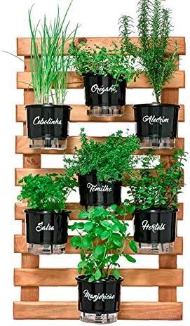 Horta Vertical Autoirrigável Cuisine : Amazon.com.br: Jardim e Piscina