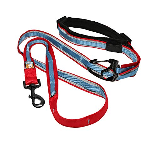Kurgo 6 in 1 Hands Free Dog Leash |Reflective Running Belt Leash for Dogs, Crossbody & Waist Belt Leash, Carabiner Clip,vPadded Handle for Training, Hiking Or Jogging, Quantum Leash, 6 Colors