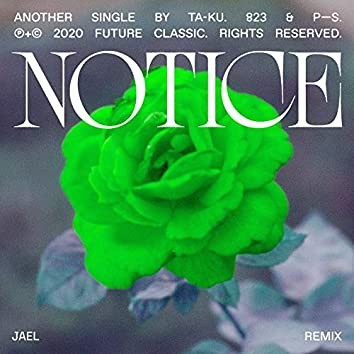 Notice (JAEL Remix)