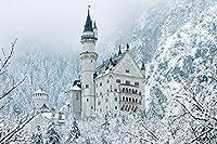 雪山のノイシュヴァンシュタイン城 - 世界 - #48436 - キャンバス印刷アートポスター 写真 部屋インテリア絵画 ポスター 50cmx33cm