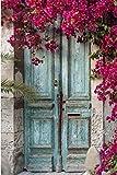 Pintar por Numeros pintura de la puerta de las rosas del paisaje DIY Cuadro al óleo con números para Kit de Pintura al óleo Digital para Adultos y niños de Lienzo decoración para el hogar 40x50cm
