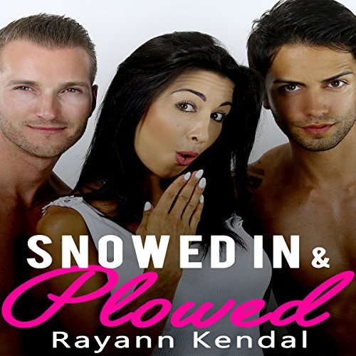 Snowed in & Plowed audiobook cover art