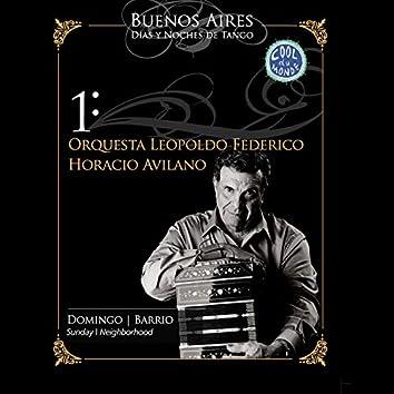 Buenos Aires, Días y Noches de Tango: Domingo / Barrio (En Vivo)