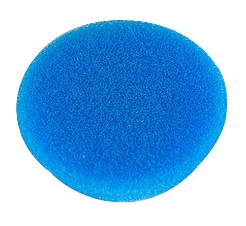 RUPES Polierpad Coarse Polierschwamm Polierscheibe blau hart 30-40mm 1 STK