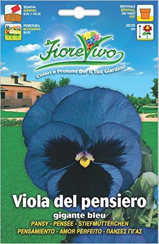 Hortus 60SDFV034 Fiorevivo Viola Pensiero Gigante, Bleu, 13x0.2x20 cm